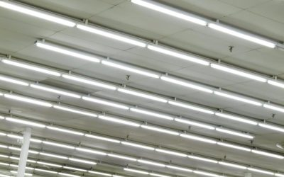 Why Are My Fluorescent Lights Still Not Working After I Changed the Bulbs?